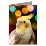 Cockatiel Greeting Cards