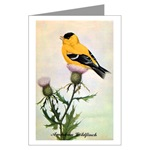 Goldfinch Greeting Cards